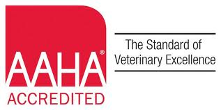 North Avenue Animal Hospital is an AAHA accredited veterinary practice.